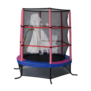Mini trampoline with enclosure D